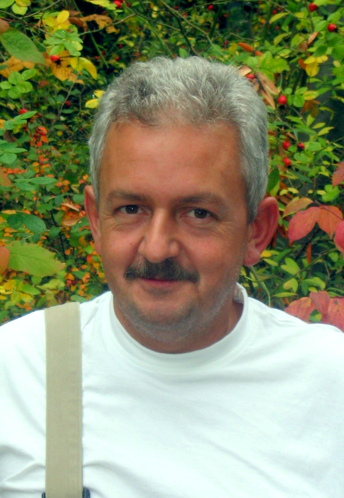 Peter Reinhard